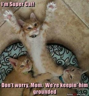 I'm Super Cat!  Don't worry, Mom.  We're keepin' him grounded