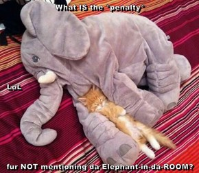 What IS the *penalty*   LoL fur NOT mentioning da Elephant-in-da-ROOM?