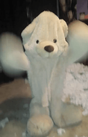 What Happens After People Rip the Stuffing Out of Giant Teddy Bears is Hilarious and Terrifying