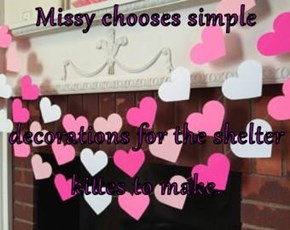 Missy chooses simple  decorations for the shelter kittes to make.
