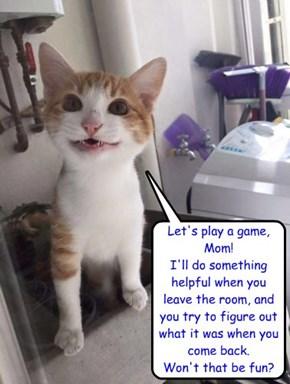 "Qouth Grumpy Cat: ""NO"""