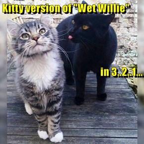 "Kitty version of ""Wet Willie"" in 3..2..1..."