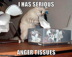 I HAS SERIOUS  ANGER TISSUES