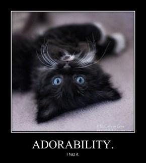 ADORABILITY.