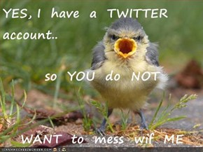 YES, I  have  a  TWITTER  account.. so  YOU  do  NOT WANT  to  mess  wif  ME