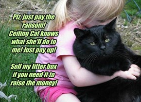 Plz, just pay the ransom!