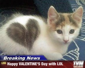 Breaking News - Happy VALENTINE'S Day with LOL