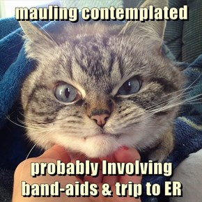 mauling contemplated   probably Involving                     band-aids & trip to ER