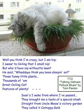 """""""Catnip Blues"""" (TTO """"Talking Vietnam Potluck Blues"""" by Tom Paxton)"""