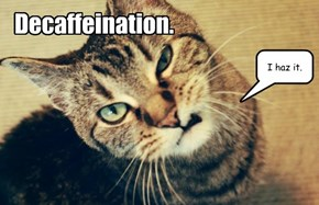 Decaffeination.