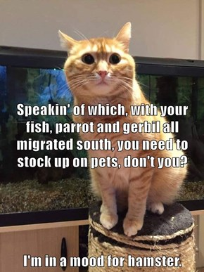 Speakin' of which, with your fish, parrot and gerbil all migrated south, you need to stock up on pets, don't you?    I'm in a mood for hamster.
