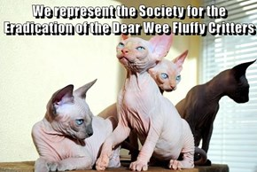 We represent the Society for the Eradication of the Dear Wee Fluffy Critters