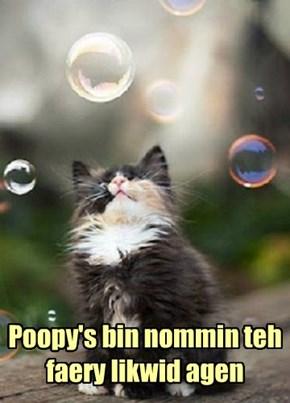 Poopy's bin nommin teh faery likwid agen