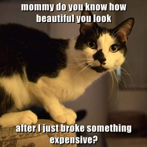 mommy do you know how beautiful you look  after I just broke something expensive?