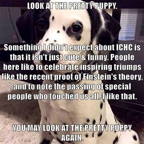 LOOK AT THE PRETTY PUPPY. Something I didn't expect about ICHC is that it isn't just cute & funny. People here like to celebrate inspiring triumps like the recent proof of Einstein's theory, and to note the passing of special people who touched us all. I