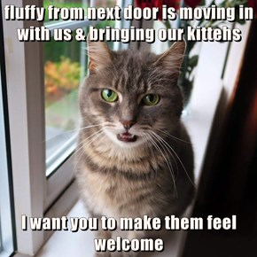 fluffy from next door is moving in                  with us & bringing our kittehs  I want you to make them feel welcome