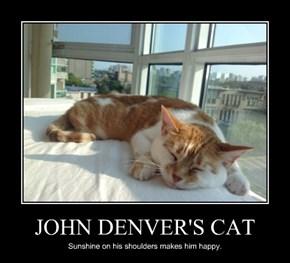 JOHN DENVER'S CAT