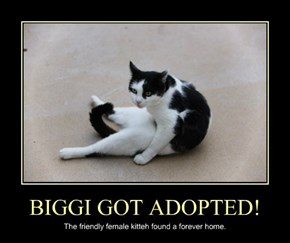 BIGGI GOT ADOPTED!