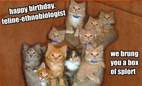happy birthday, feline-ethnobiologist