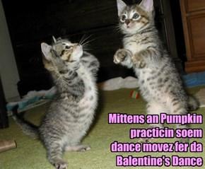Mittens an Pumpkin practicin soem dance movez fer da  Balentine's Dance