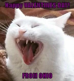 Happy VALENTINES DAY!  FROM OHIO