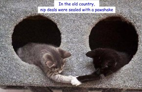 In the old country, nip deals were sealed with a pawshake
