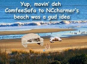 Nothing like nip, birdies, likkur 'n let's not forget deh half nekkid guys runnin down deh beach