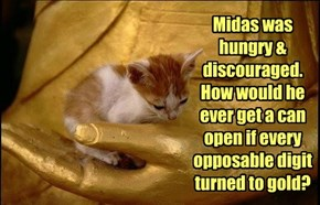 Midas was hungry & discouraged