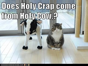 Does Holy Crap come from Holy Cow.?