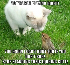 YOU'RE NOT PLAYING RIGHT!  YOU KNOW I CAN'T HUNT YOU IF YOU DON'T RUN!                                                            STOP STANDING THEIR LOOKING CUTE!