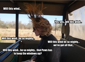 Windy errand day
