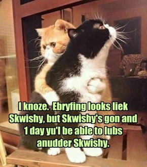 I still see and hear Skwishy ebrywherz!