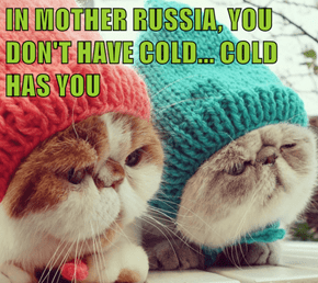 IN MOTHER RUSSIA, YOU DON'T HAVE COLD... COLD HAS YOU