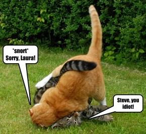 Steve, you idiot!