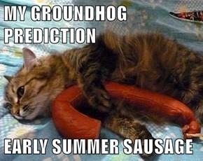 MY GROUNDHOG PREDICTION  EARLY SUMMER SAUSAGE