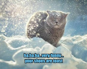 ha,ha,ha...very funny... your shoes are toast