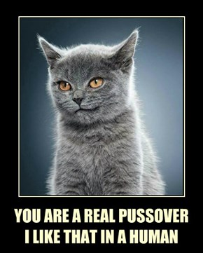YOU ARE A REAL PUSSOVER I LIKE THAT IN A HUMAN