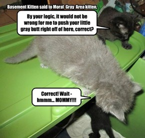 Basement Kitten said to Moral  Gray  Area kitten,
