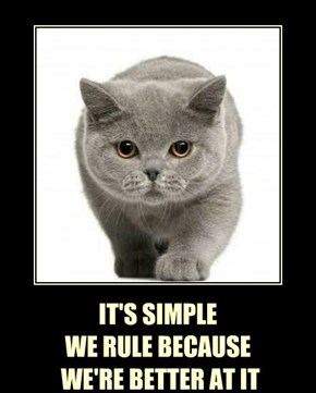 IT'S SIMPLE WE RULE BECAUSE  WE'RE BETTER AT IT