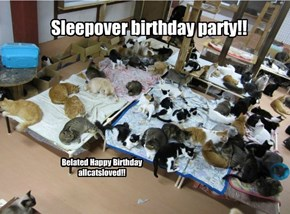 Sleepover birthday party for allcatsloved!