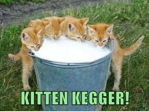 KITTEN KEGGER!