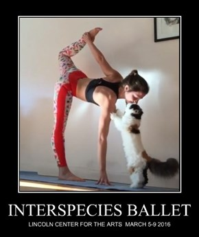 INTERSPECIES BALLET