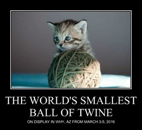 THE WORLD'S SMALLEST BALL OF TWINE