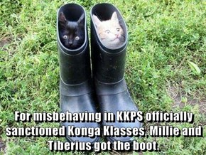 For misbehaving in KKPS officially sanctioned Konga Klasses, Millie and Tiberius got the boot.