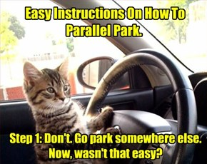 Easy Instructions On How To Parallel Park.