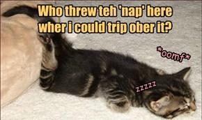 Trip n naps!