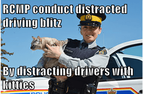 RCMP conduct distracted driving blitz  By distracting drivers with kitties