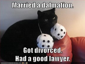 Married a dalmation.   Got divorced.                                Had a good lawyer.