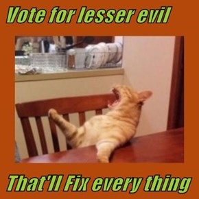 Vote for lesser evil   That'll Fix every thing