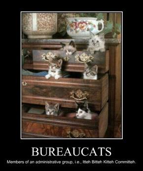 BUREAUCATS